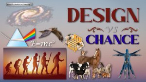 Design vs Chance! Let's think sensibly about this....