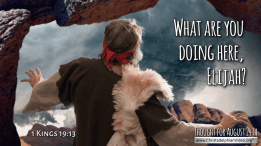"""Daily Readings & Thought for August 24th. """"WHAT ARE YOU DOING HERE ..."""""""