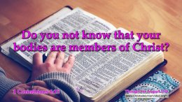 """Daily Readings & Thought for August 25th. """"DO YOU NOT KNOW …?"""""""