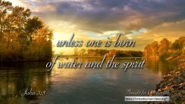 """Daily Readings & Thought for October 11th. """"UNLESS ONE IS BORN OF …"""""""