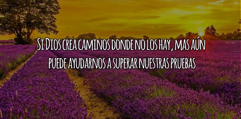 Dios Crea Caminos