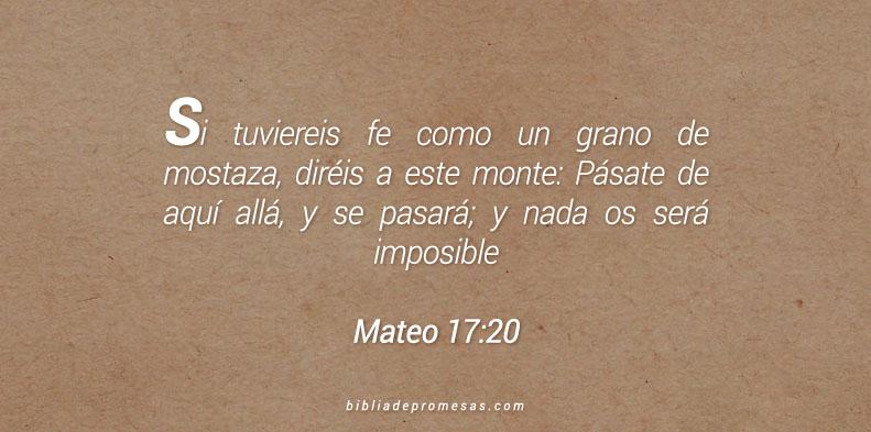Mateo 17:20