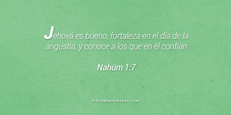 Dios es nuestra fortaleza