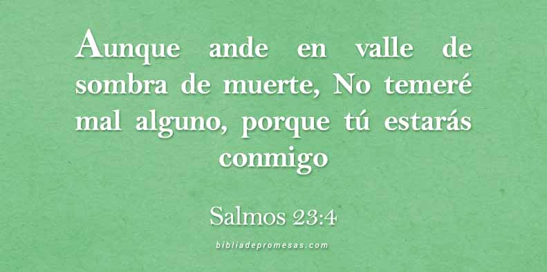 24ENERO--SALMO23