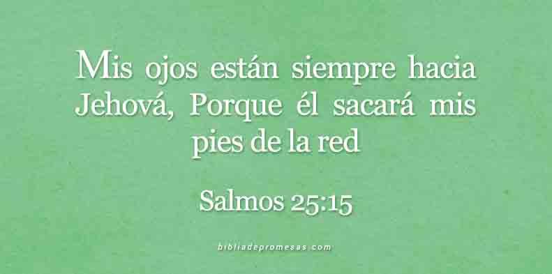 24-mayo-salmos-25-15