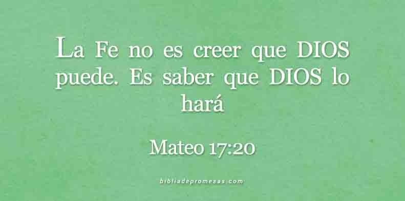 MATEO-17-20