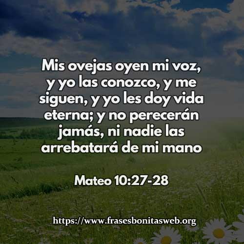 mateo-10-27-78
