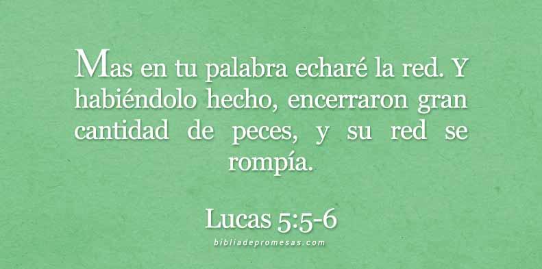 lucas-5-5-6-dev
