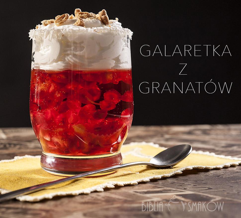s_granat2