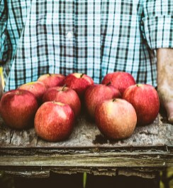 Nourishing apples, daily