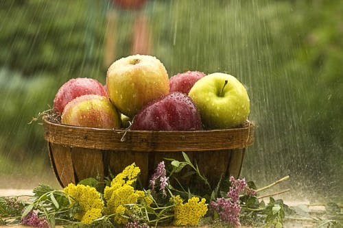 Raining On Apples