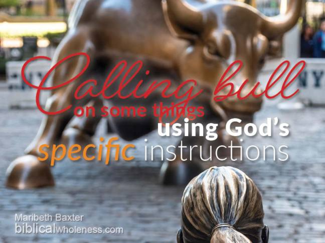 Calling bull on some things using God's specific instructions