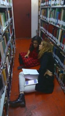 En búsqueda bibliográfica