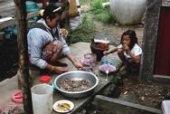 Cambogia il pranzo +¿ servito!
