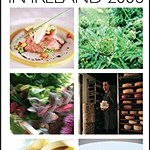The Bridgestone 100 Best Restaurants 2006 & The Bridgestone 100 Best Places to Stay 2006 by John and Sally McKenna ****