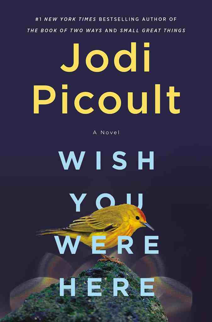 Wish You Were Here:A Novel Jodi Picoult
