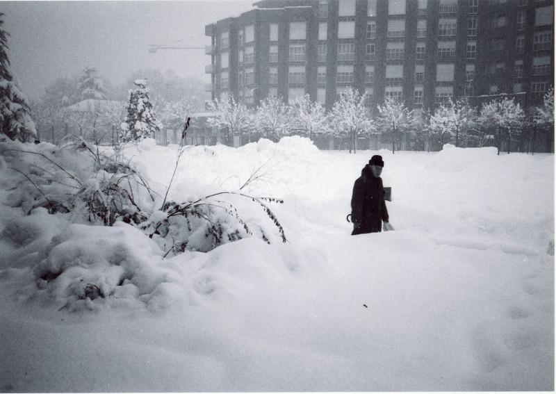 Nevica a Cologno Monzese