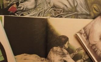 Libros ilustrados por mujeres