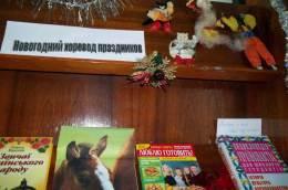 noviy-god-v-biblioteke-41-6