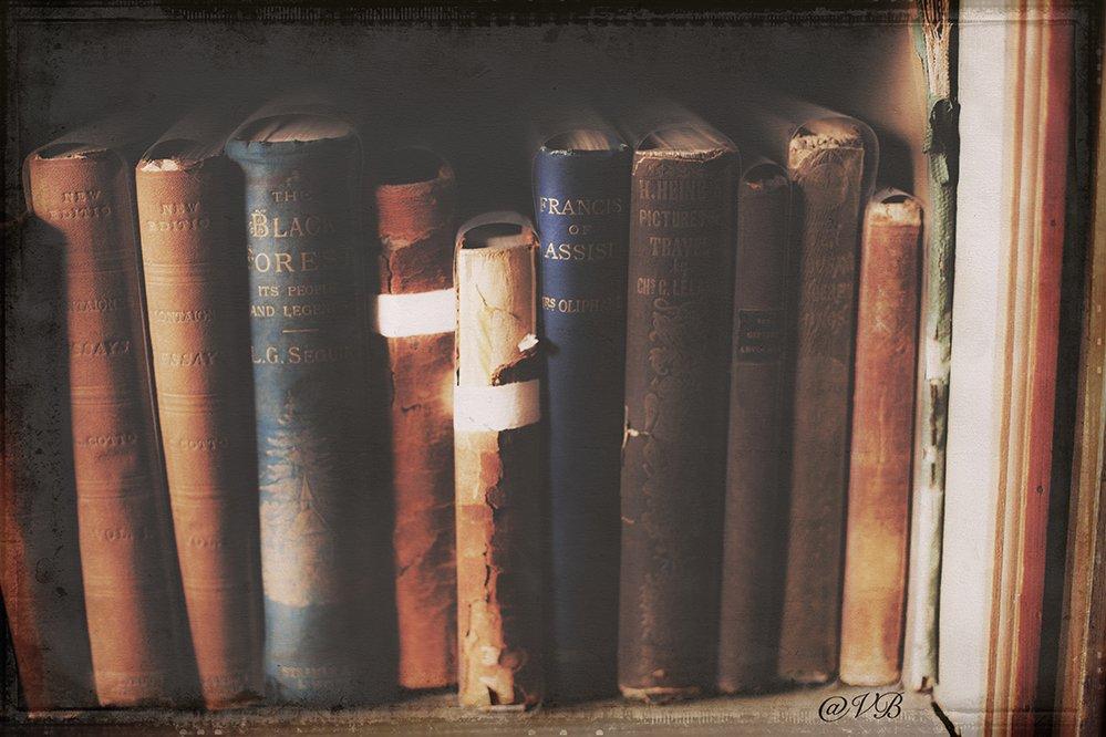 Books Bibliotheca Veneficae Literary parlor