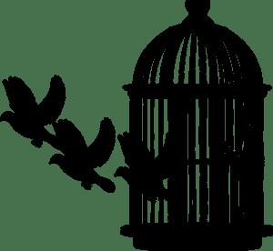 Se libérer de la prison
