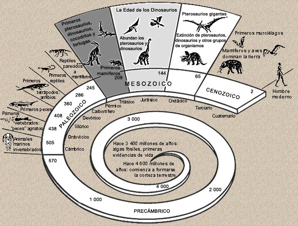 Resultado de imagen de evolucion vida tierra