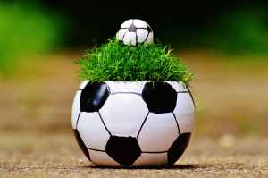 european-championship-football-2016-grass-163475