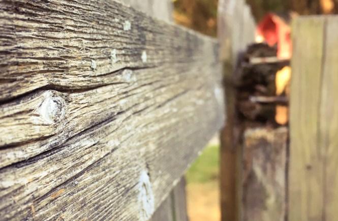 broken fences, broken souls