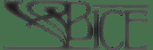 logo fading bice bicycles