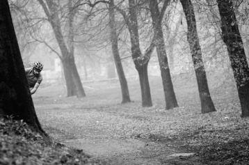 ghettocross parghetto sscx triennale milano tree