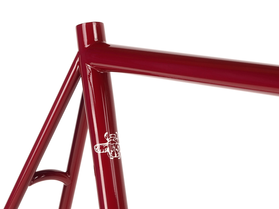 Dorian Endurance Road Bicycles - Bice Bicycles Custom Steel Frames