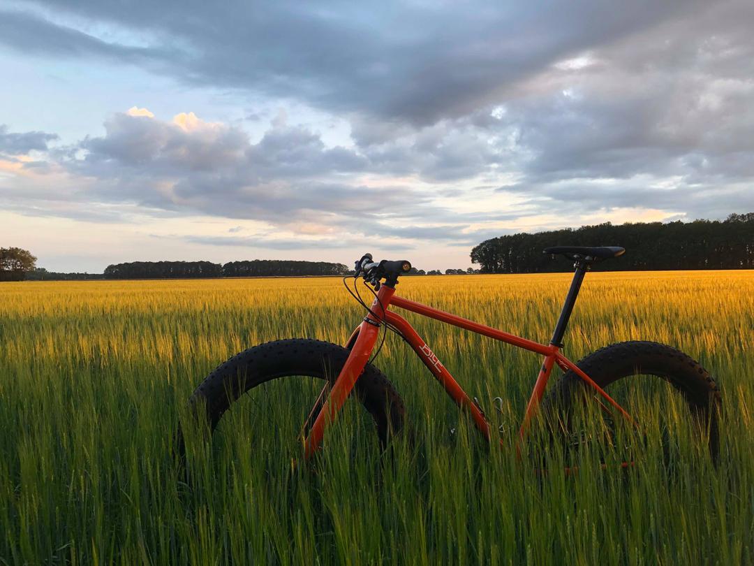 Wilder FatBike MTB - Bice Bicycles