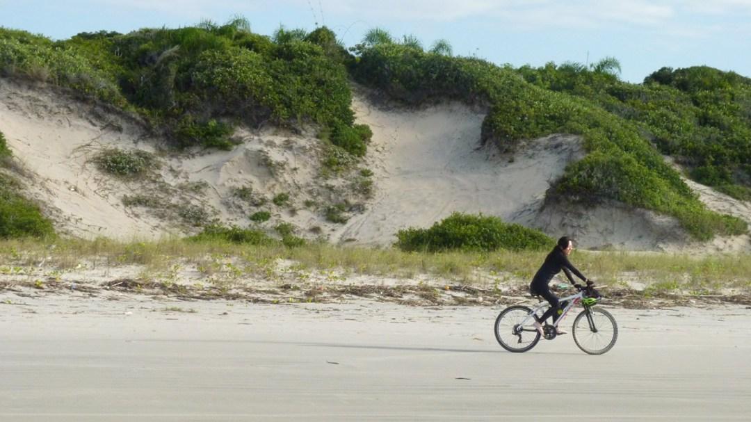 Dunas fixas em pleno litoral paulista nas praias de Ilha Comprida