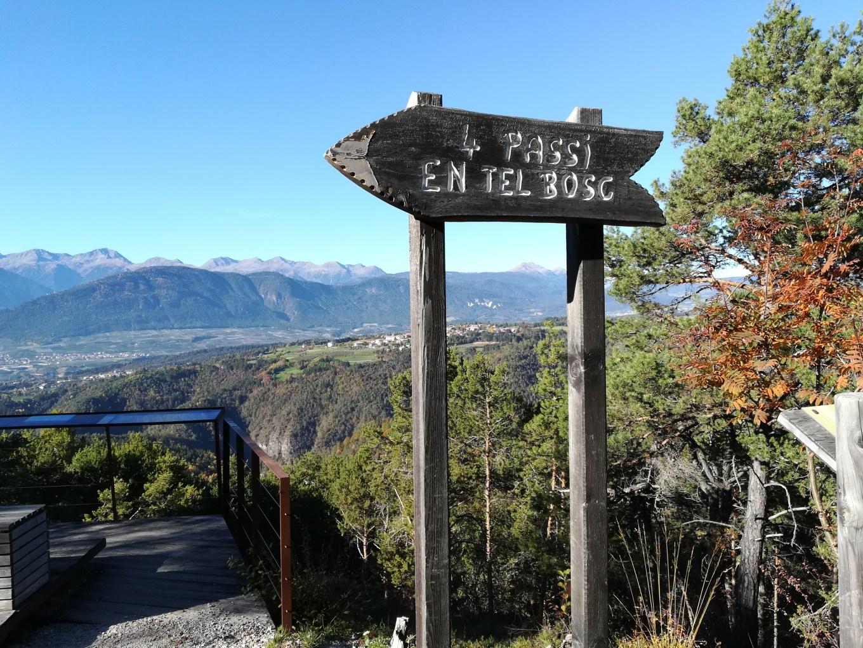 """Da qui inizia l'impegnativo trail di """"4 Passi en tel Bosc"""" (Riccardo Tempo)"""