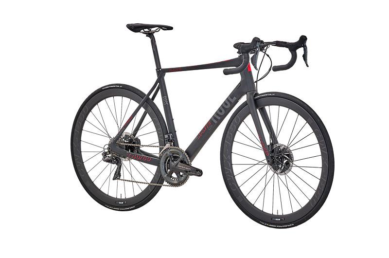 bici-endurance-rose