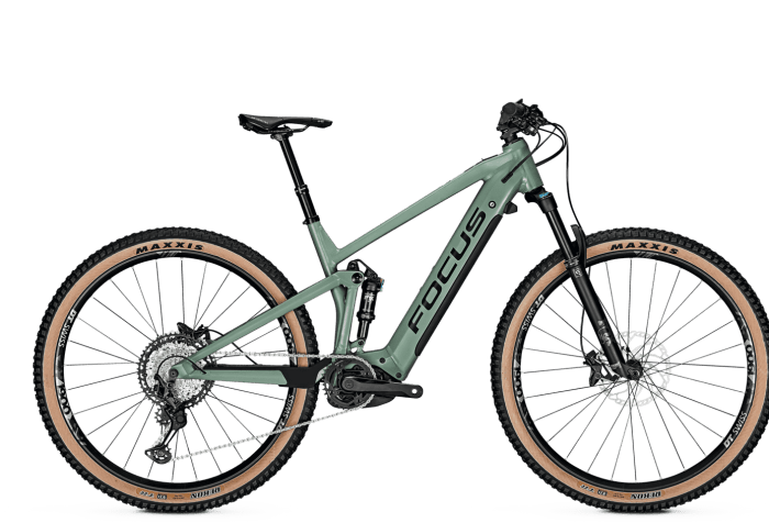 ebike focus 2021