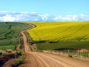 Canola-routes