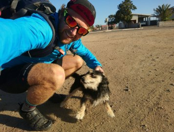 Namaqualand is the region of the dog. Photo by Seamus Allardice.