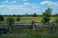I love these kind of old wooden fences