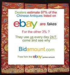 Ebay and Bidamount newsletter