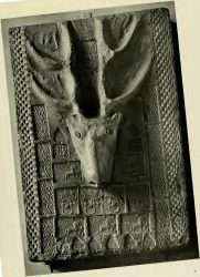 Han Pottery Relief of Stag Head