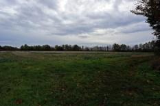 site 29a Green Farm