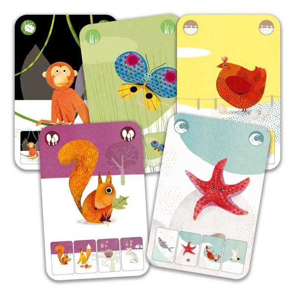 Cartes de différentes famille du jeu Mini Nature avec un singe une poule un papillon un écureuil et une étoile de mer