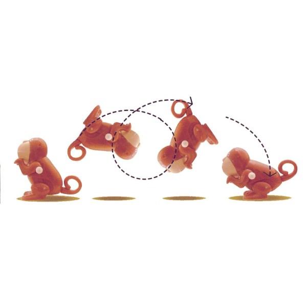 animal sauteur singe en train de faire une pirouette qui se décompose sur 4 mouvements