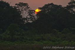 chitwan05