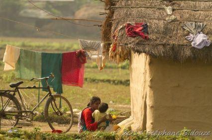 chitwan21