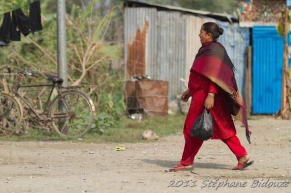 chitwan23