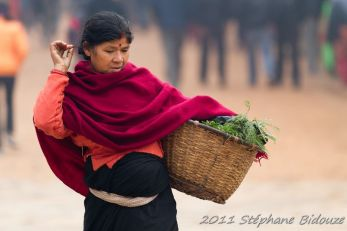 bhakta-email320