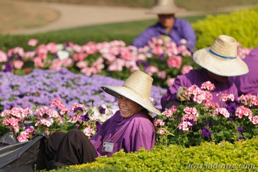 Mae Fa Luang 05
