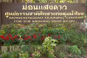 Monsaengdao Aced Thai 01